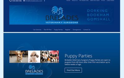 Brelades Vets Website