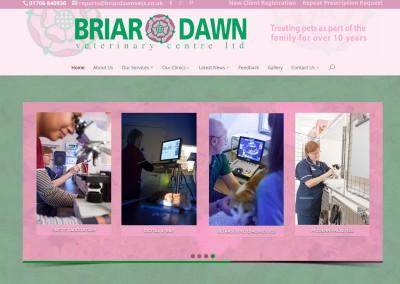 Briar Dawn Vets